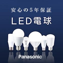 p_led_250